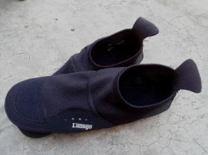 Luongo1